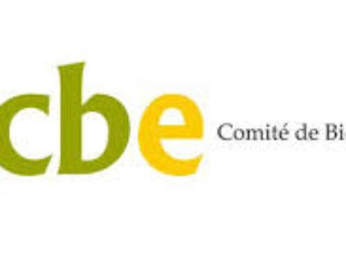 El Comité de Bioética de España, contra la eutanasia
