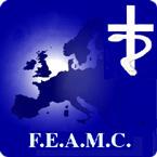 feamc2012e22