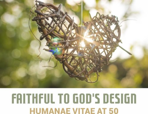 Faithful to God´s Design