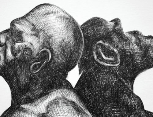 Deep concern about human-monkey embryo
