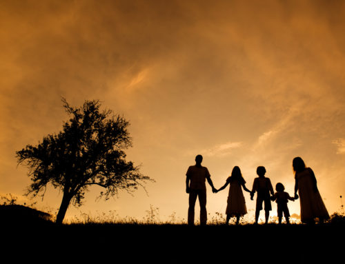 Repartons de la famille